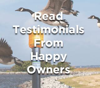 Read Real Success Stories and Testimonials